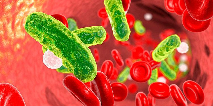 La pandemia ha desviado la atención y ha aumentado el consumo de antibióticos desencadenando una mayor resistencia de los microorganismos a escala planetaria.