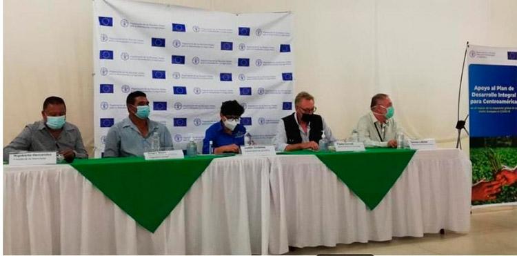 El proyecto de la FAO y la UE fortalecerá el desarrollo de emprendimientos y la agricultura, como una respuesta a la crisis por COVID-19.