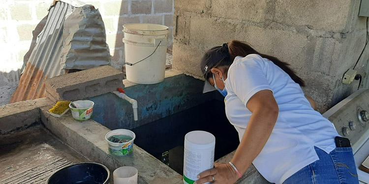 El lavado de las pilas es fundamental para eliminar las larvas del zancudo transmisor del dengue.