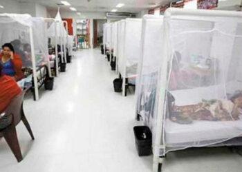 La mayoría de menores hospitalizados con dengue son originarios del Distrito Central.