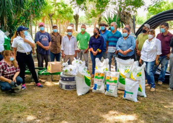 La SAG-Dicta participa en la selección y ubicación de los productores, en la capacitación en procesos de silos y manejo agronómico de maíz y de sorgo.