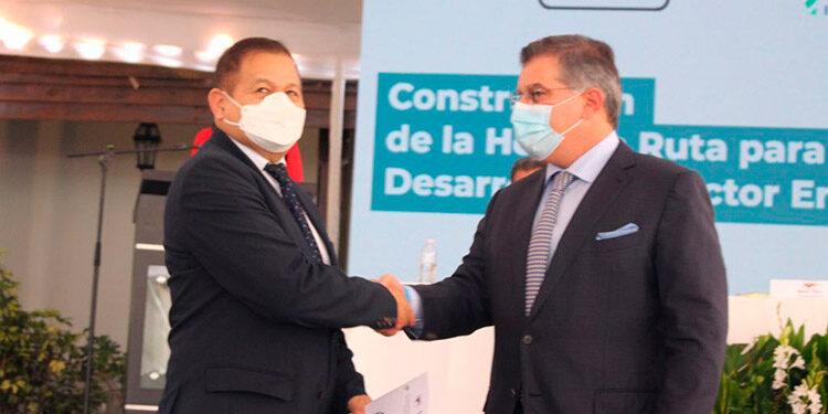 El presidenciable de Alianza Patriótica, Romeo Vásquez, dijo que a esta propuesta le agregaría una auditoría internacional del manejo financiero y operativo de la ENEE.