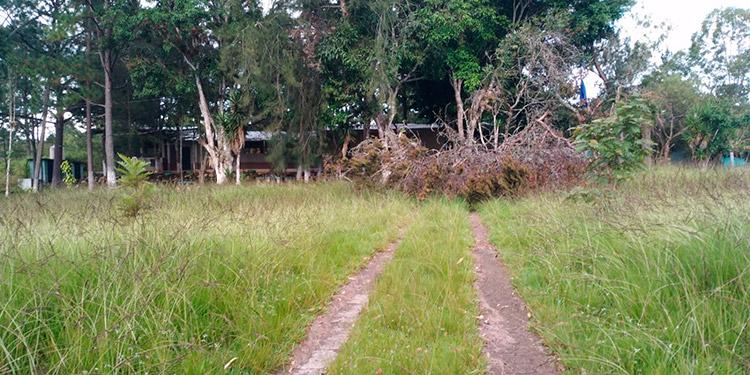 """En malas condiciones luce la escuela """"Rafael Pineda Ponce"""", la cual funciona en Aguas del Padre."""