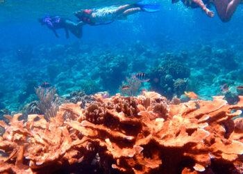 Aprovechamiento sostenible de los recursos marino-costeros.