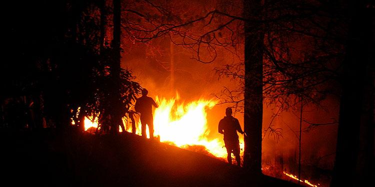 Este año, el mes que más incendios ha registrado es abril./ (Flickr)
