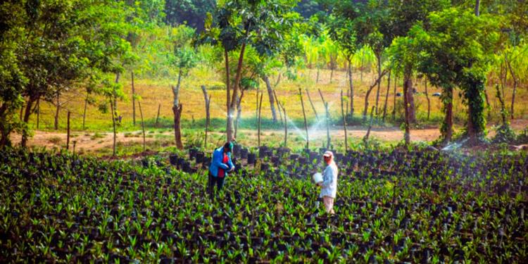 Las alianzas público-privado son clave para desarrollar el agro.