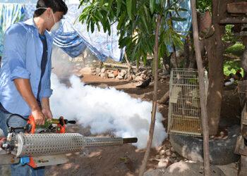 Las acciones para erradicar el vector del zancudo continúan a nivel del departamento de Choluteca.