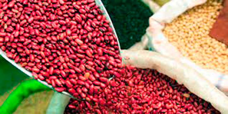 16.8 millones de quintales de granos básicos produce el país al año.