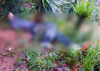 Se indicó que el sujeto era perseguido por varios pandilleros que lo ultimaron a balazos.