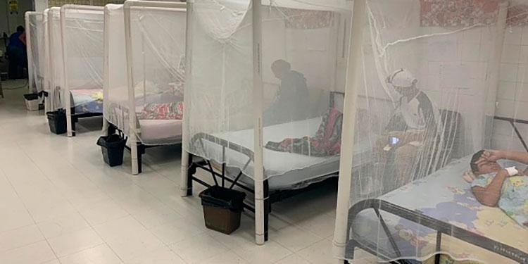 La sala pediátrica de dengue del HE, se encuentra llena de niños y en los próximos días se abrirá más espacio por la alta demanda de pacientitos.